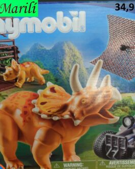 Playmobil Explorers