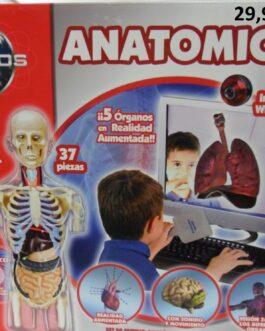 AnatomiCefa